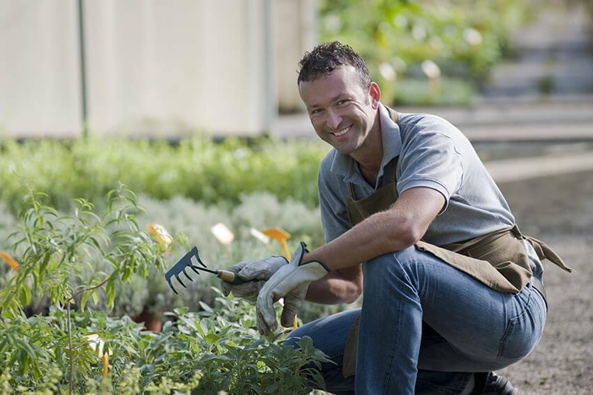 Horticulturist at work