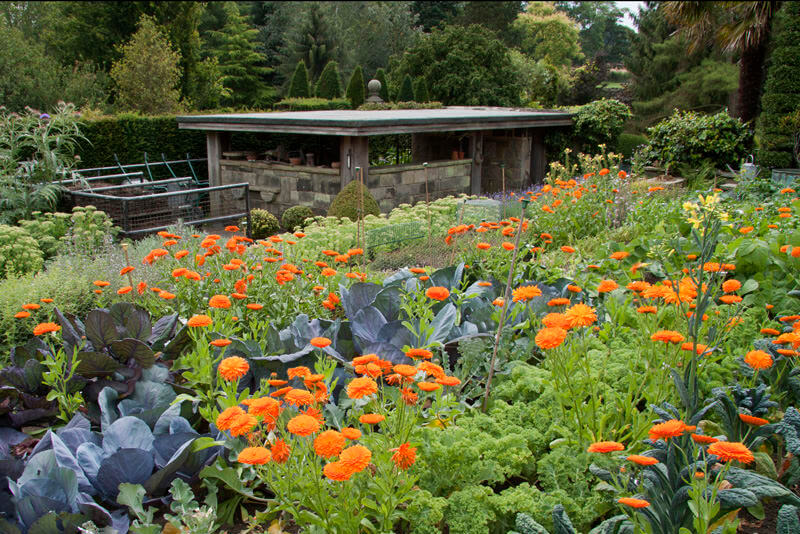 The Kitchen Garden at York Gate