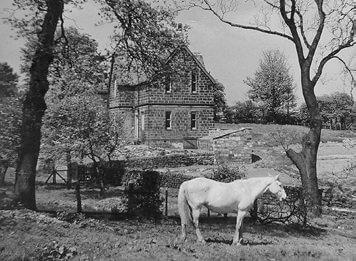 York Gate Pre-Garden