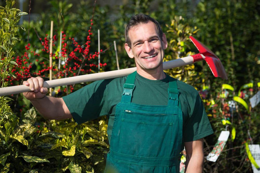 Gardener in a nursery