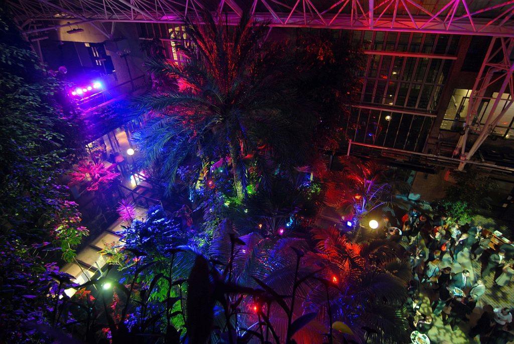 Conservatory - Night 03