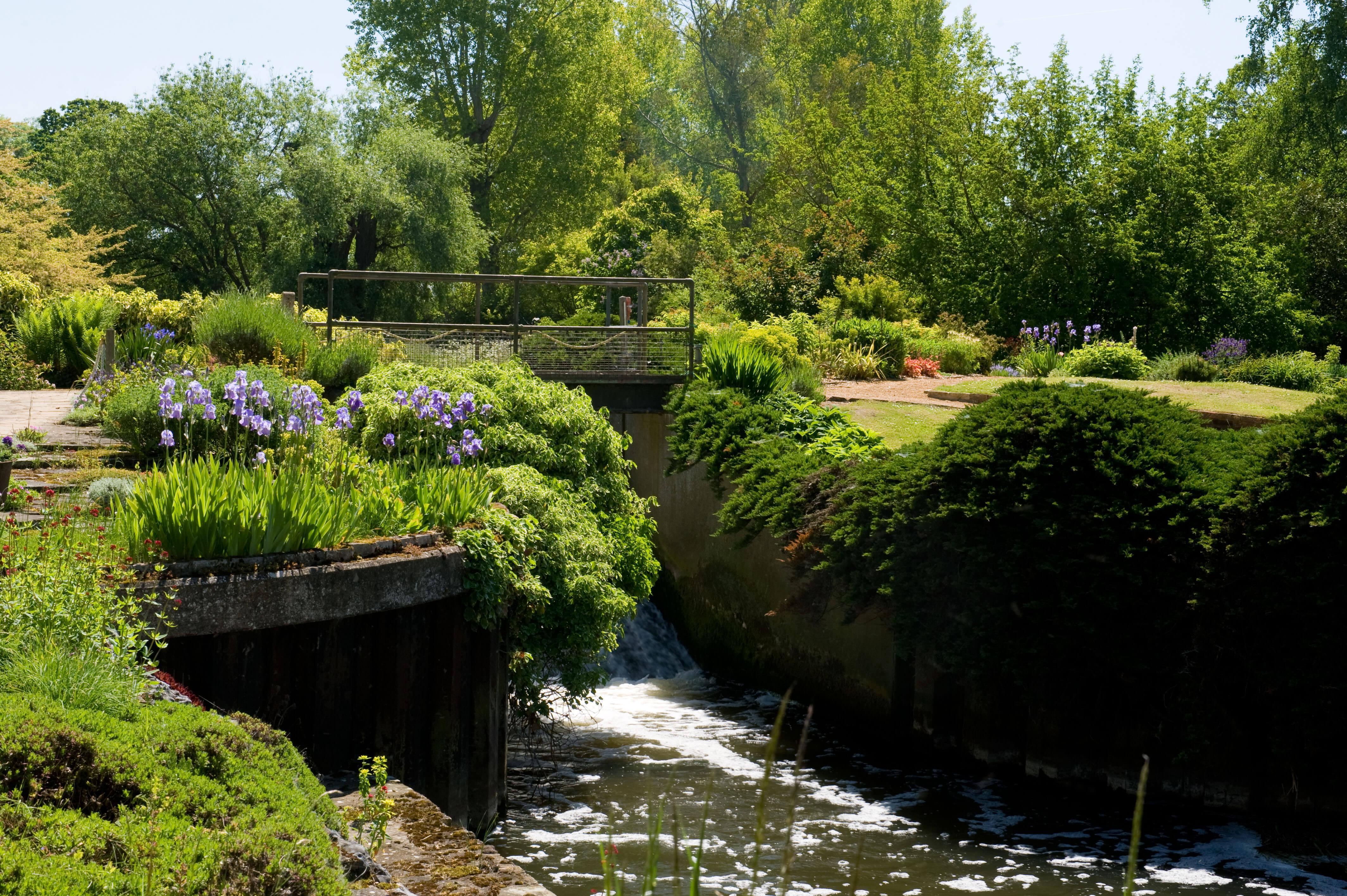 Fullers Mill Garden   Perennial