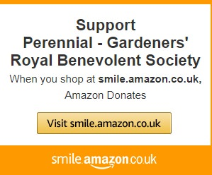 smile amazon uk